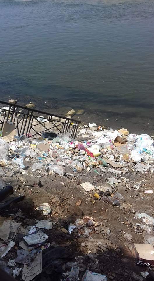 مواطن يرصد تراكم القمامة على ضفاف النيل قرب القناطر الخيرية (صور)