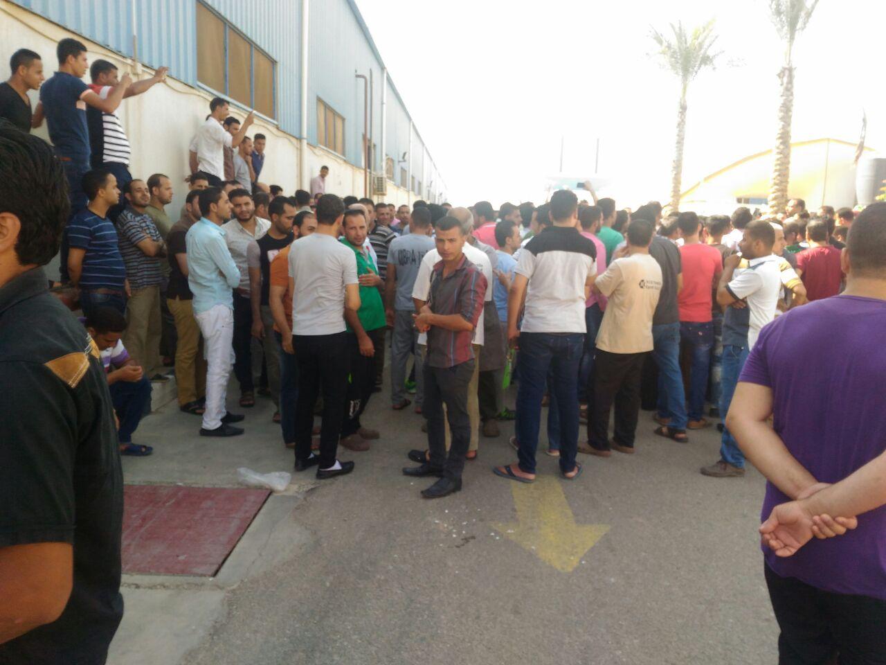 بالصور.. إضراب عمال شركة تركية بالعاشر للمطالبة بحقوقهم المالية والنقابية