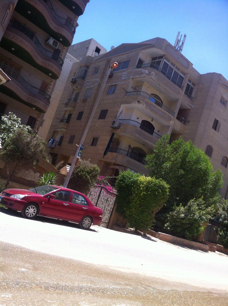 بالصور.. مواطن يرصد إهدار الكهرباء في هضبة الأهرام بإنارة أعمدة الإنارة نهارًا