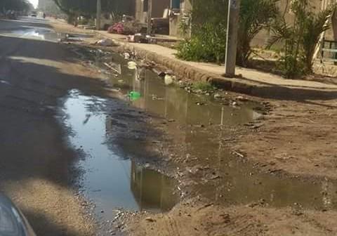 طفح الصرف الصحي في شوارع «السباعية» بإدفو (صور)