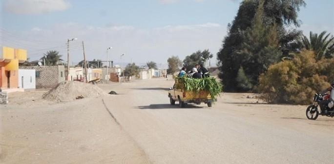 حملة توقيعات في «الخرطوم» بالبحيرة لوقف إنشاء مصنع حلوى «مخالف»