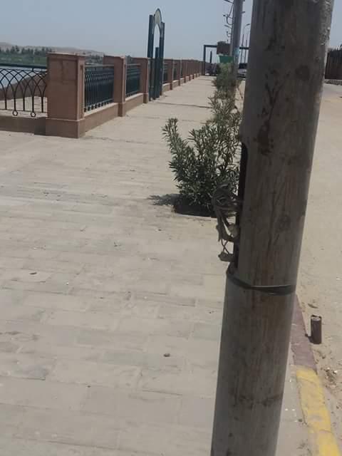 صور| أسلاك عارية بأعمدة الإنارة في إدفو تهدد حياة سكان المدينة