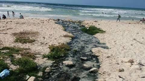 بالصور..كارثة بيئية بالإسكندرية اختلاط مياه الصرف الصحي بالبحر على شاطئ النخيل