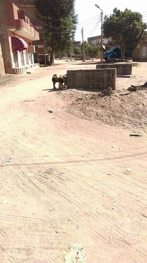أهالي «إدفو» محافظة أسوان يطالبون بإزالة كتلة خرسانية تتوسط الطريق العام