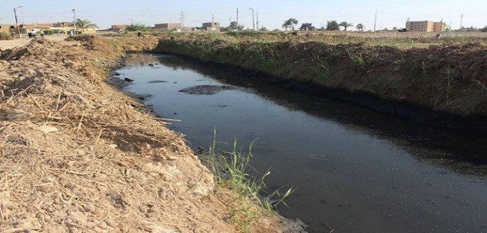 في الفيوم.. مئات الأفدنة مُهددة بالبوار بسبب ريها بمياه الصرف الصحي (صور)