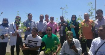 بالصور.. مبادرة «شجرها» تزرع ألف شجرة مورينجا وزينة في رأس البر