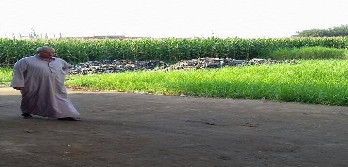جزيرة الوراق| مسؤولون يلقون القمامة في الأرض الزراعية خلال تصوير لمحافظ الجيزة (صور)