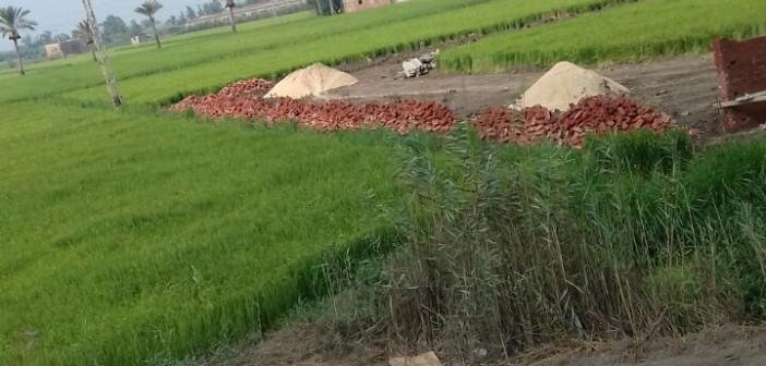 📸مواطن يرصد مشاهد التعدي على الأراضي الزراعية في دمياط (صورة)