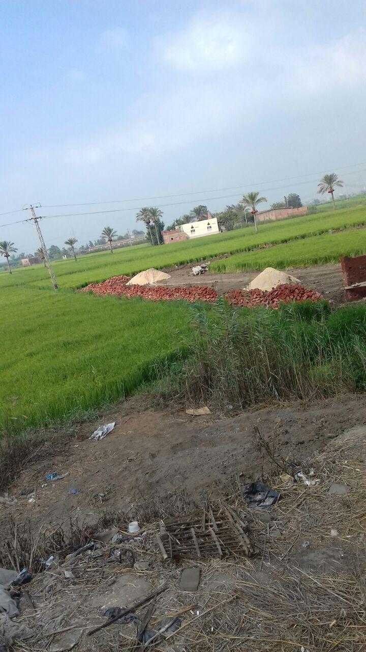 مواطن يرصد مشاهد التعدي على الأراضي الزراعية في دمياط (صورة)