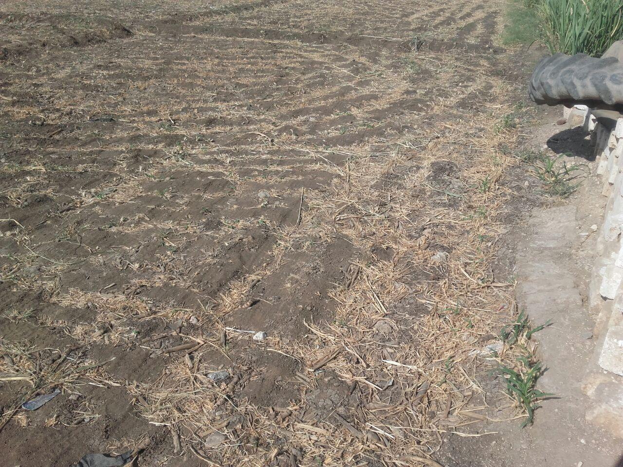 أهالي «أبوحزام» بقنا : ترعة القرية تحولت لمقلب قمامة ولا تصلح لري الأراضي الزراعية