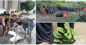 هنخليها جنة.. مبادرة شباب النمروط لزراعة 100 شجرة