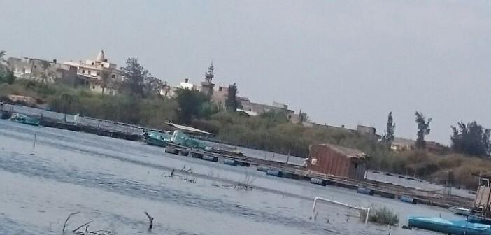 صور | مطالب بوقف التعديات وردم النيل في «جزيرة الفرس» بكفر الشيخ