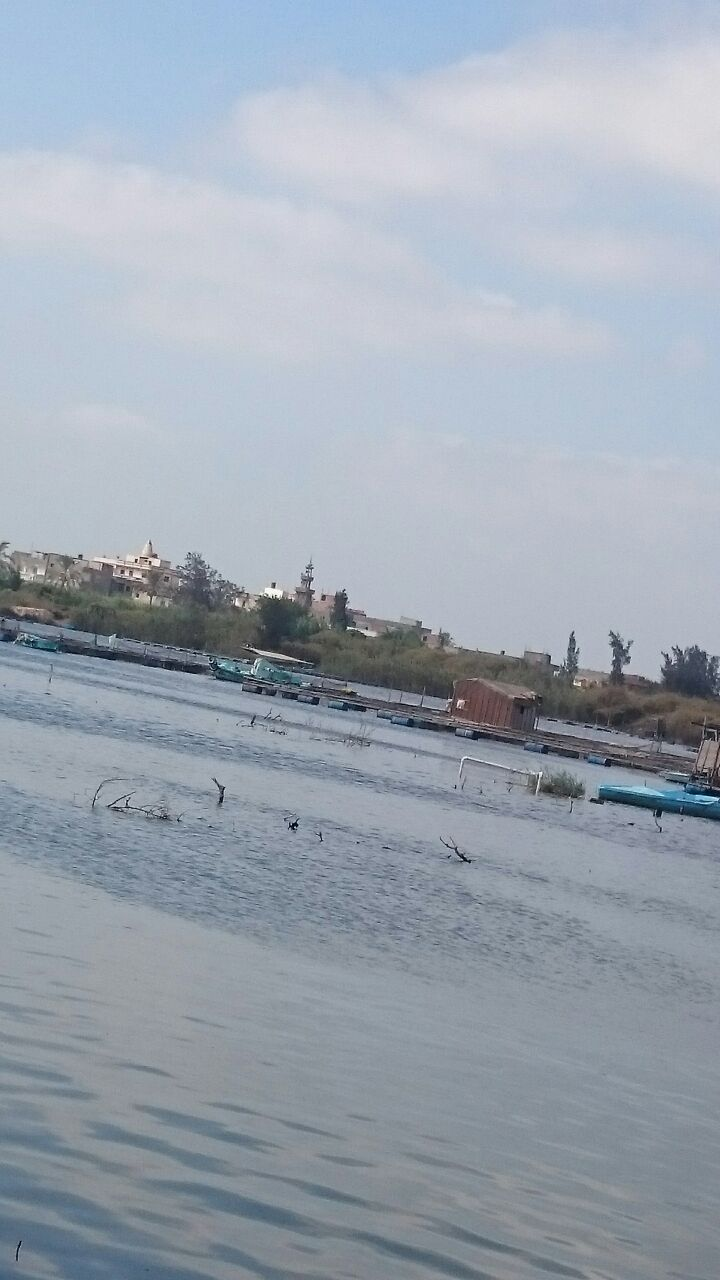 أهالي جزيرة الفرس بكفر الشيخ: أصحاب النفوذ بمركز مطوبس يردمون النيل للبناء والمحافظ لا يعرف شئ