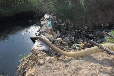 في طامية بالفيوم.. مئات الأفدنة مُهددة بالبوار بسبب ريها بمياه الصرف الصحي (صور)