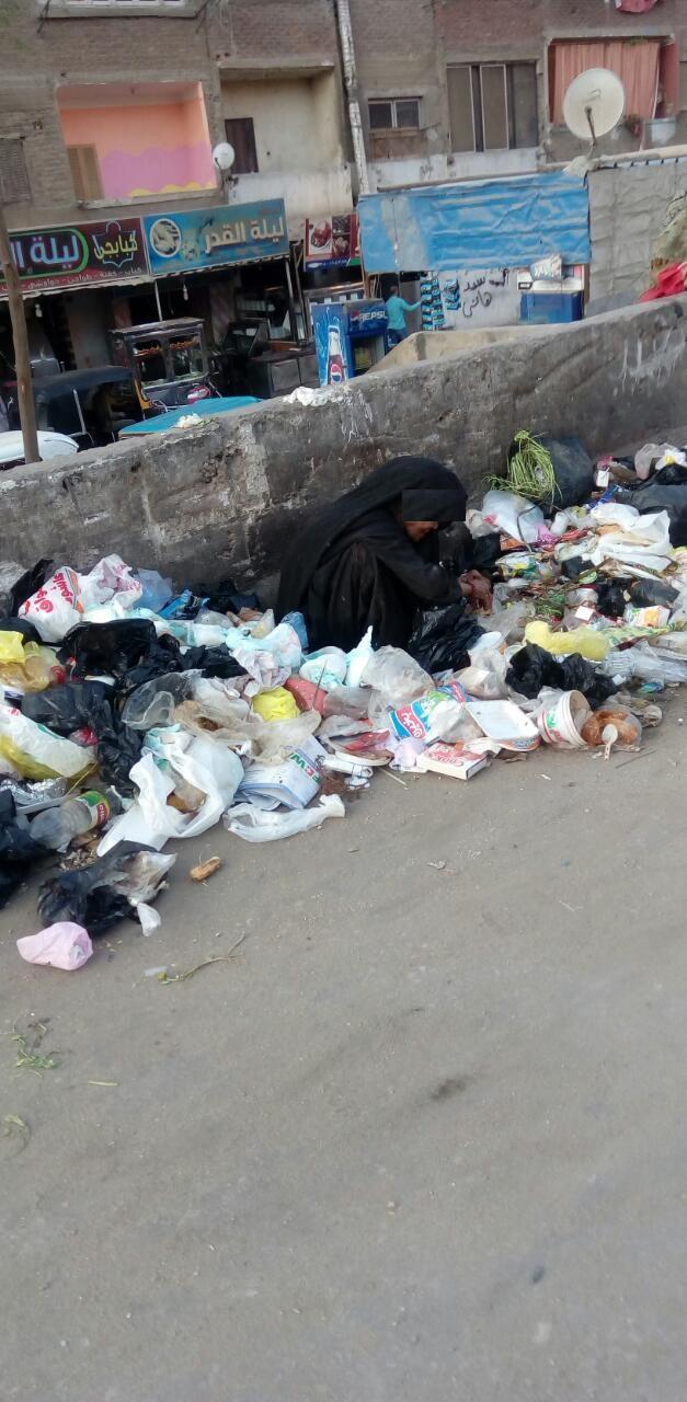 الفقر غربة في الوطن.. عجوز تنبش القمامة بحثاً عن طعام عَ الدائري (صور)