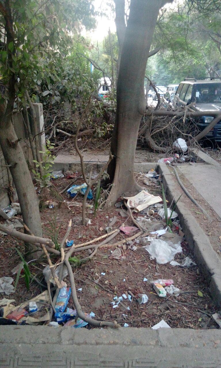 صور| انتقادات تراكم القمامة والمخلفات في شارع سفارة جنوب السودان بالمعادي
