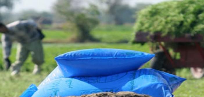مزارعو «بنجا» بسوهاج يطالبون وزير الزراعة بصرف حصتهم من الأسمدة