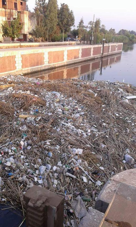 أهالي «كفر ربيع» بالمنوفية يطالبون بتطهير ترعة القرية من القمامة (صور)