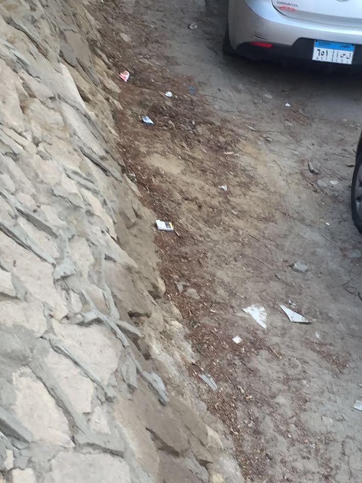سكان «النزهة الإستثماري» يشكون .. الشوارع مكسرة والكلاب الضالة تحاصرنا (صور)