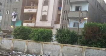 منورة ياحكومة.. أعمدة الإنارة مضاءة فى شوارع سمنود بالغربية (صورة)
