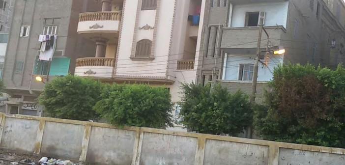 ⚡️ أعمدة الإنارة مضاءة نهارًا في شوارع سمنود بالغربية (صورة)