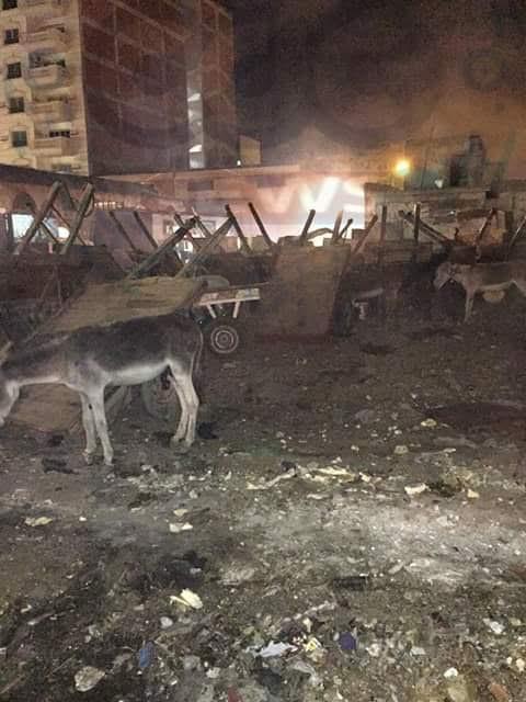 سكان حي شرق ببورسعيد يشتكون من تراكم القمامة وحرقها بشوارع المدينة (صور)