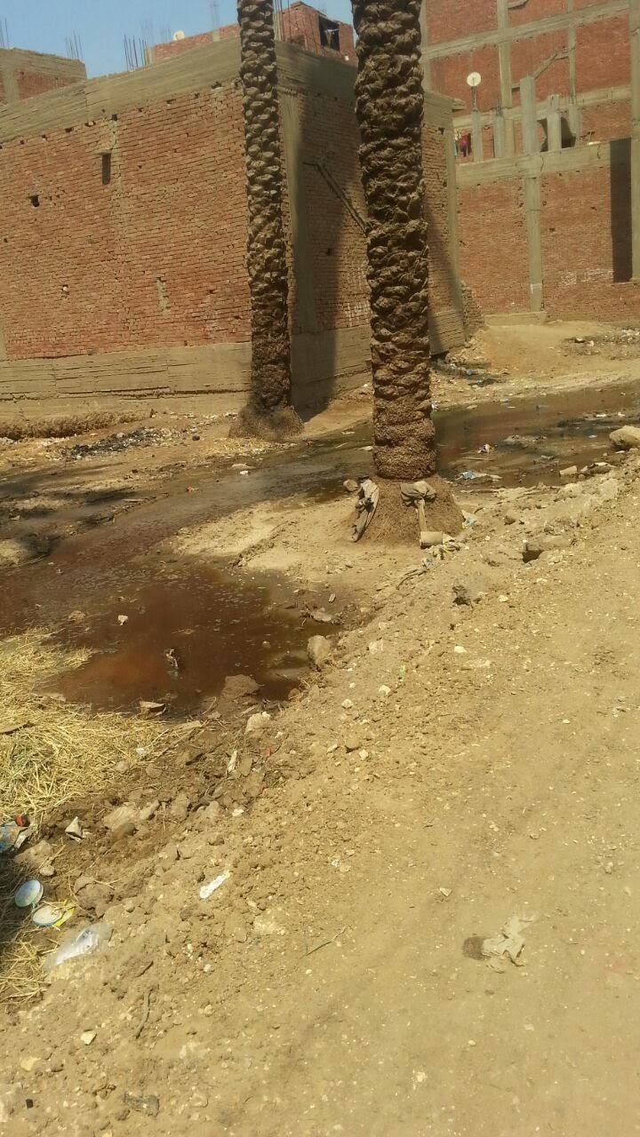 بالصور..طفح الصرف الصحي بشوارع أبوالنمرس.. والأهالي:«مسئولي المحافظة تجاهلوا شكوانا»(صور)