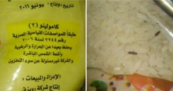 بالصور.. «سوس وصراصير» في الأرز التمويني: الشركة الموردة تورطت في مخالفات منذ عهد مبارك