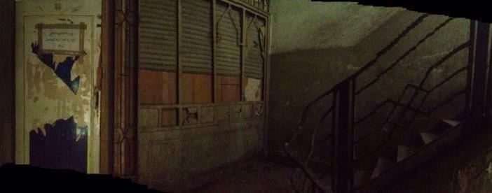 بالصور والفيديو.. أكاديمي يرصد إهمال إدارة البعثات بمجمع التحرير: «قطط وزبالة»