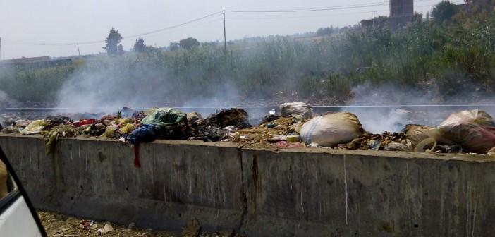 📸انتشار القمامة على جانبي طريق الزقازيق ـ ميت غمر (صورة)