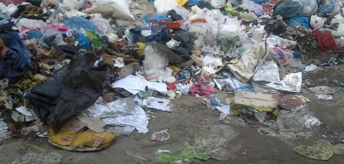 📸سكان «المعراج» بالمعادي: المنطقة تعاني الإهمال الشديد.. وتذخر بالكلاب والقمامة