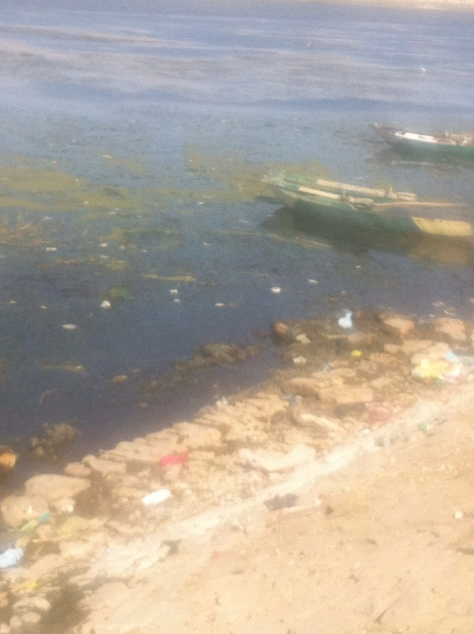 أهالي «جزيرة راجح» يطالبون مسؤولي الأقصر و«الري» بتطهير نهر النيل (صور)