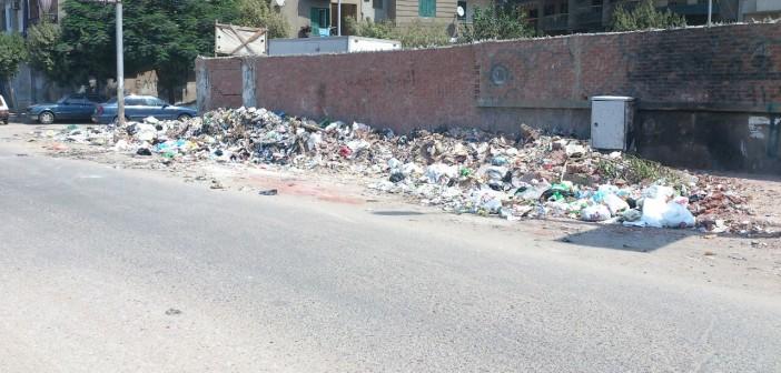 📸مواطن يشكو من انتشار القمامة بشوارع في منشية البكري