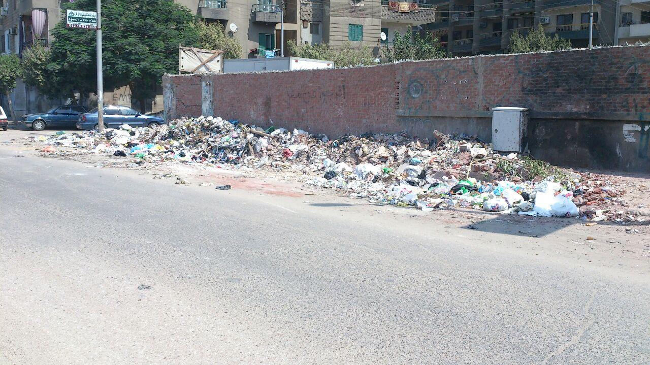 مواطن يشكو من انتشار القمامة بشوارع في منشية البكري