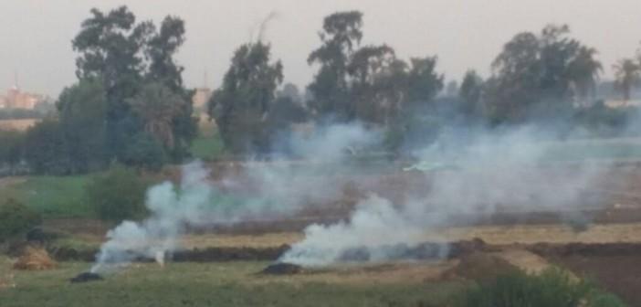 🔥رغم تحذيرات «البيئة».. تجدد حرائق قش الأرز بالقليوبية (صور)