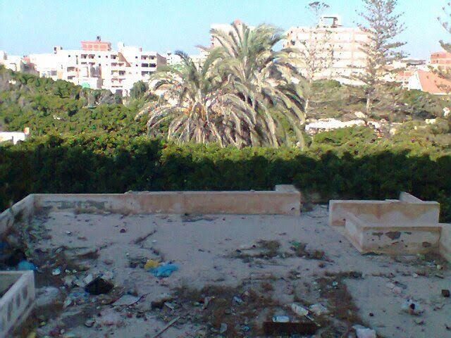 مواطنة: أصبحنا نعيش في مقلب قمامة وتحاصرنا رائحة الصرف أين مسئولي الإسكندرية (صور)