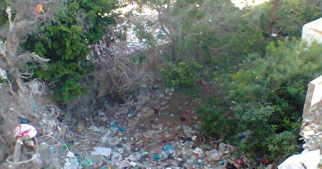 أزمة القمامة مٌستمرة بالإسكندرية.. ومواطنة: نعيش داخل صندوق للمخلفات (صور)