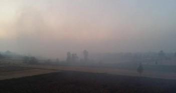 مأساة حرق الأرز مستمرة .. أهالي «الجرايدة» بكفر الشيخ السماء كلها دخان ..أين المسئولين (صور)
