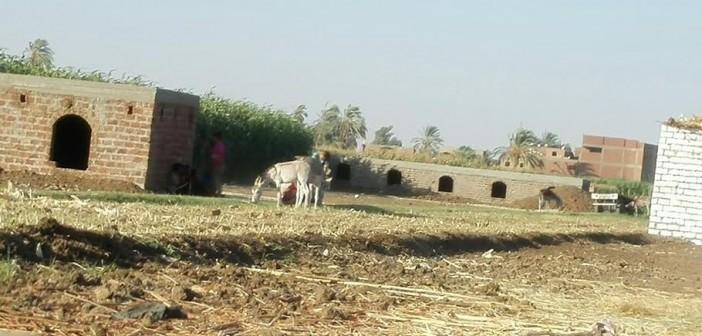 أهالي «العمارنة» يطالبون محافظ سوهاج بوقف تبوير الأراضي وبناء المقابر عليها (صور )