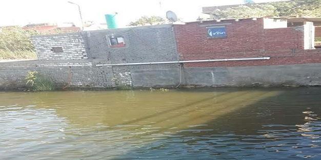 مواطن: تعديات على النيل بالغربية.. و«الري» لم ترفعها منذ عامين (صور)