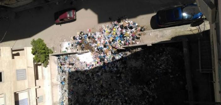 انتشار القمامة في «زهراء العجمي» بالإسكندرية: المنطقة مش عَ الخريطة (صور)