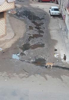 📸طفح المجاري بشارع المعهد الديني بدمنهور يثير غضب المواطنين