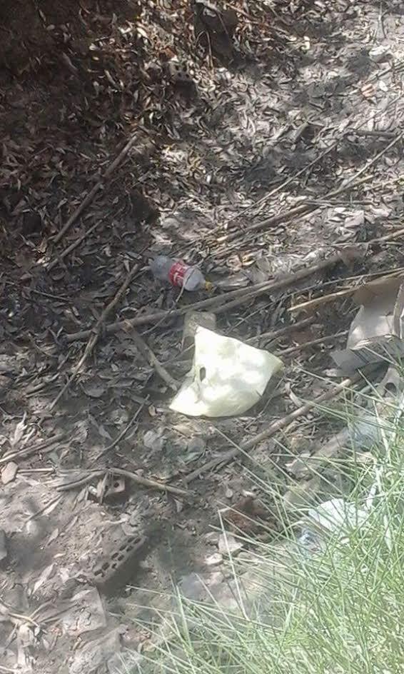 بالصور.. جفاف ترع قرية سلامون وشابور بالبحيرة والأهالي يستنجدون بالري: الأرض بارت