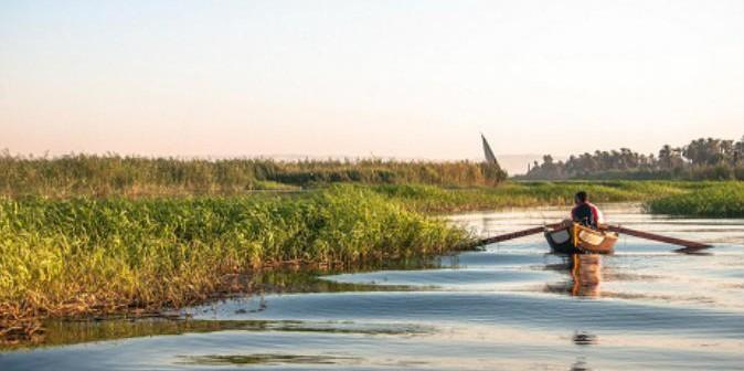 مطالب بخفض إيجار أراضي طرح النهر في «مشيرف» بالمنوفية