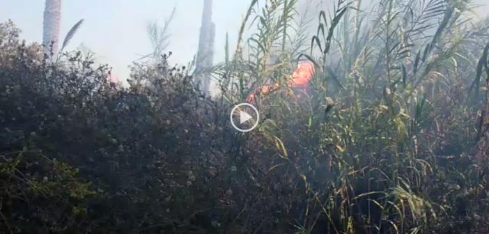 ▶️الشرقية| محول كهرباء يُشعل حريقا في «الولجا».. ويهدد حياة المواطنين (فيديو)