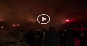 بالفيديو.. لحظة اندلاع حريق بأراضي زراعية في «برمبال القديمة» بالدقهلية