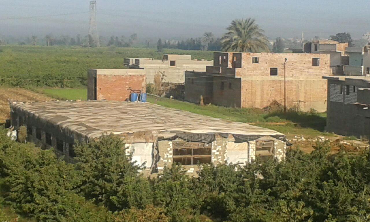 استياء بين سكان «رشيد من» وجود مزرعة دواجن داخل الكتلة السكنية (صور)