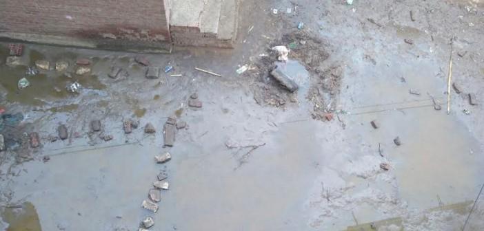 📸بالصور.. طفح الصرف في شوارع بقرية «القبة» بالشرقية