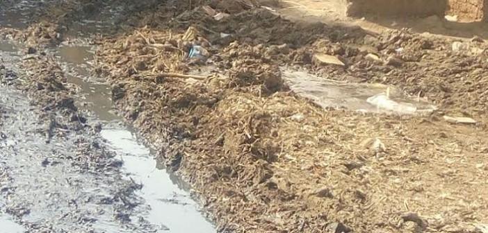طفح الصرف الصحي بشوارع في «كفر ربيع» بالمنوفية (صور)