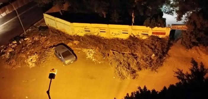 القمامة تحاصر مدرسة عباس العقاد في «تحسين فرغلي» بمدينة نصر (صور)